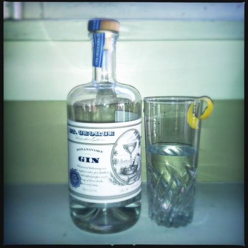 gins renaissance